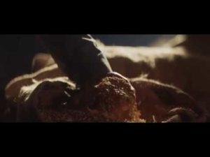 San Miguel presenta su campaña 'Motivos' con un emocionante vídeo sobre Osasuna